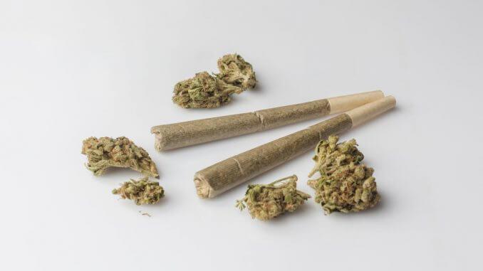 Djelovanje marihuane na tijelo može biti raznoliko! Pročitaj više na Vutropedija.com!
