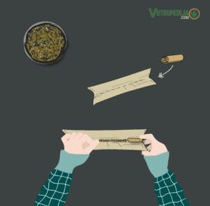 Kako smotati joint? Prepolovite rizlu i stavite filter na kraj, s lijeve ili desne strane.