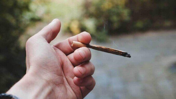 Legalizacija marihuane utječe na smanjenje smrtnosti od droga i lijekova