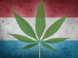 Legalizacija kanabisa u Luksemburgu