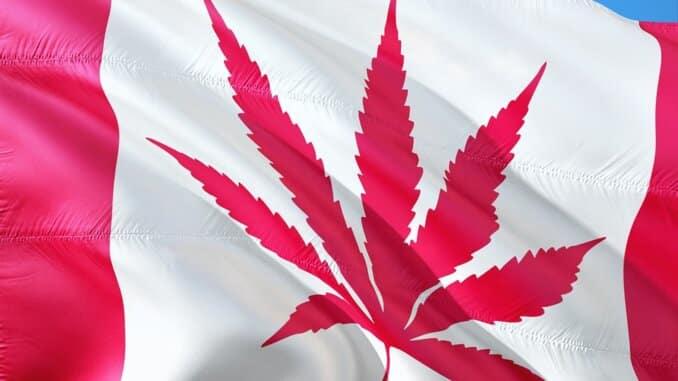 Uzgoj marihuane kod kuće je sada legalan u Quebecu.