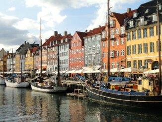 Danska industrija medicinske konoplje - prvih 6 mjeseci