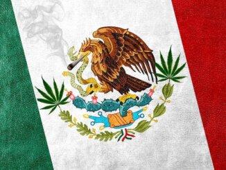 Meksiko legalizirao kanabis