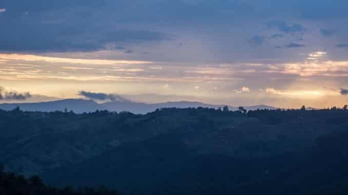 Regulacija uzgoja kanabisa u Kolumbiji