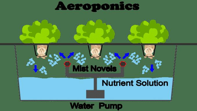 Aeroponika je metoda hidroponskog uzgoja gdje korijen nije u direkntnom kontaktu s vodom
