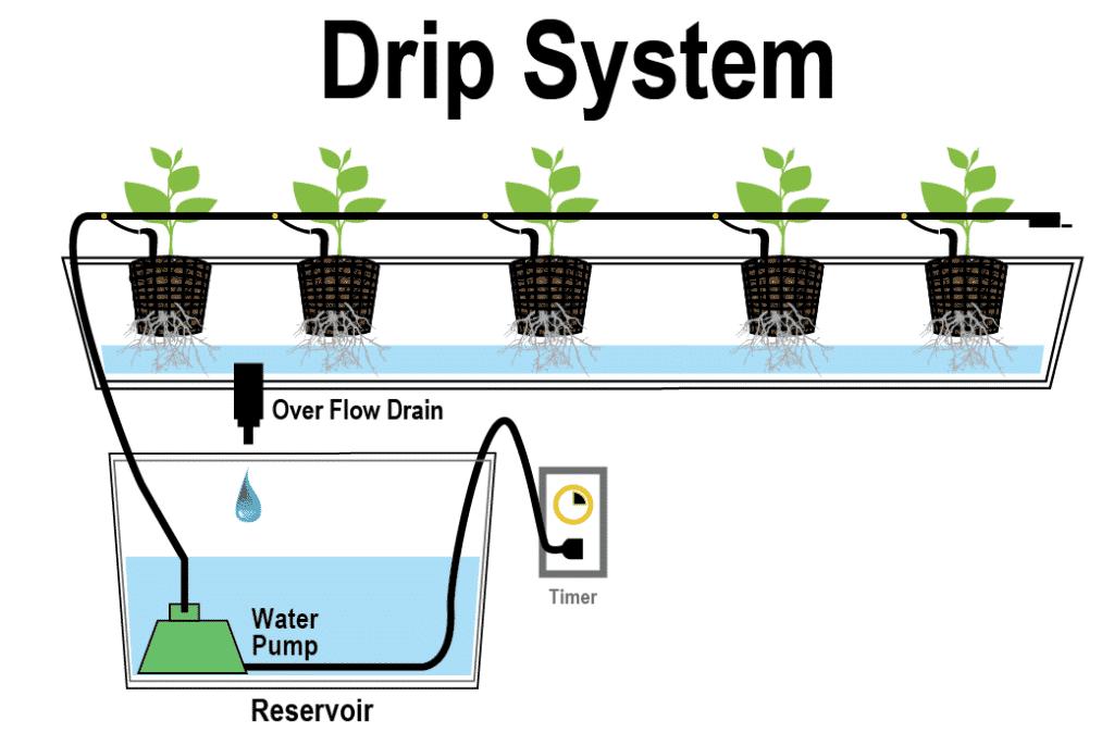 Drip sustav je tehnika koju vežemo uz hidroponski uzgoj najsličnija sustavu kap po kap