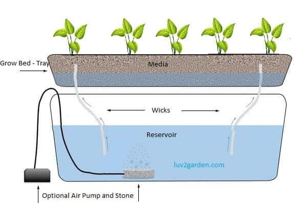 Wick sustav odnosno sustav s niti glasi kao najjednostavniji oblik povezan uz hidroponski uzgoj