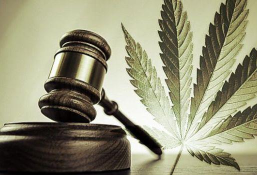 bernie sanders legalizacija marihuane