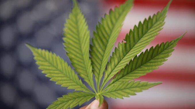 Michigan legalizirao kanabis