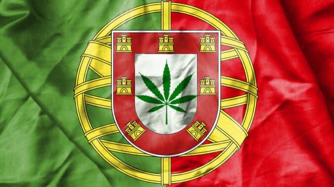 Izvoz kanabisa iz Portugala. nova kanabis sila u svijetu