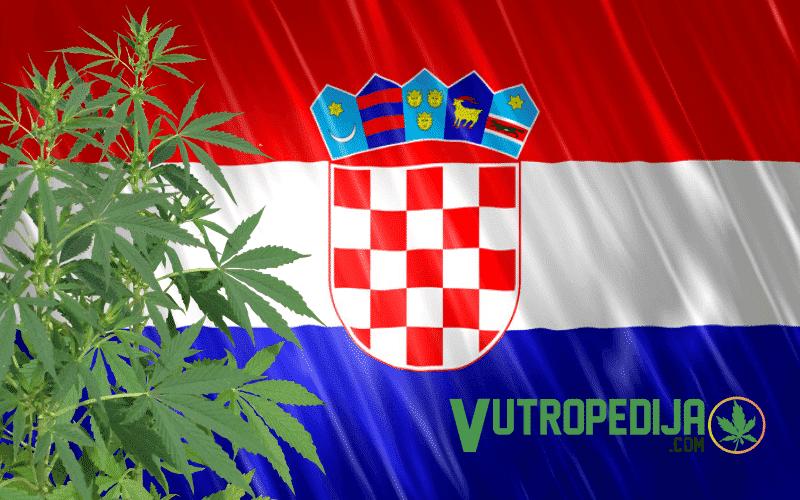 vutropedija.com
