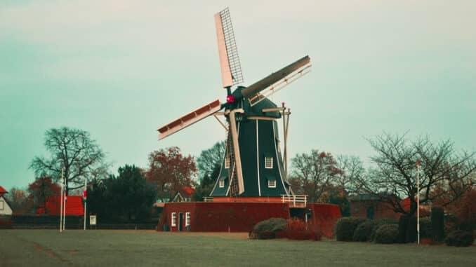 Nove vrste medicinskog kanabisa u Nizozemskoj
