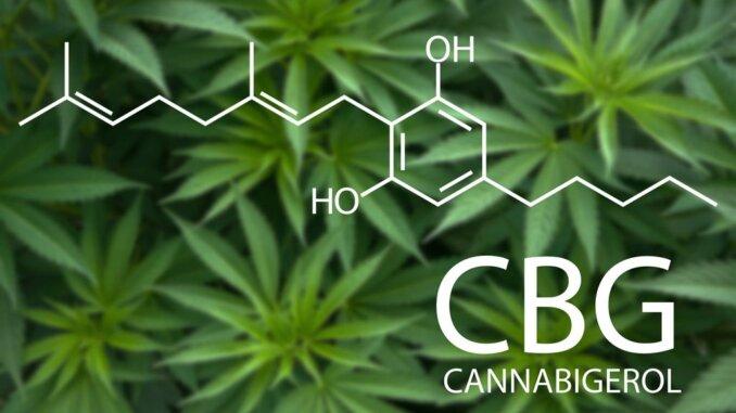 CBG - Kanabigerol