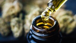 CBG ulje još nije razvijeno za ljudsku upotrebu