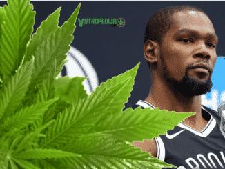 Kevin Durant moli da NBA više ne kažnjava igrače zbog kanabisa