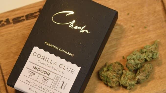 Gorilla Glue Cheeba