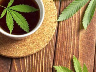 Jednom šalicom čaja od konoplje prije spavanja umirite organizam i poboljšajte san.