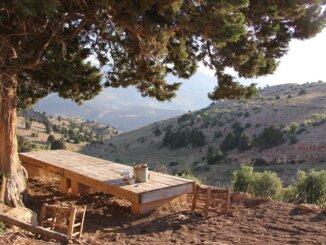 Libanon je legalizirao uzgoj medicinske konoplje kako bi spasio gospodarstvo