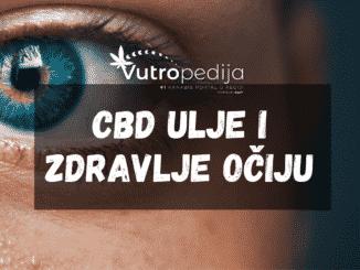 CBD ulje može biti korisno za oči, no ne kao i njegov suparnik THC.