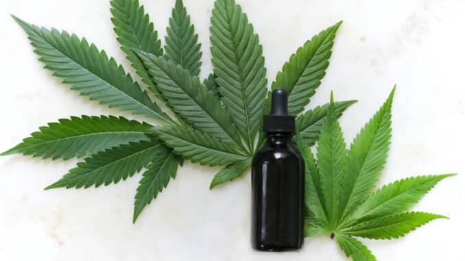 Cannabis sativa L. Slovo L. znači Linnaeus, odnosno prezime osobe koja ju je prva otkrila