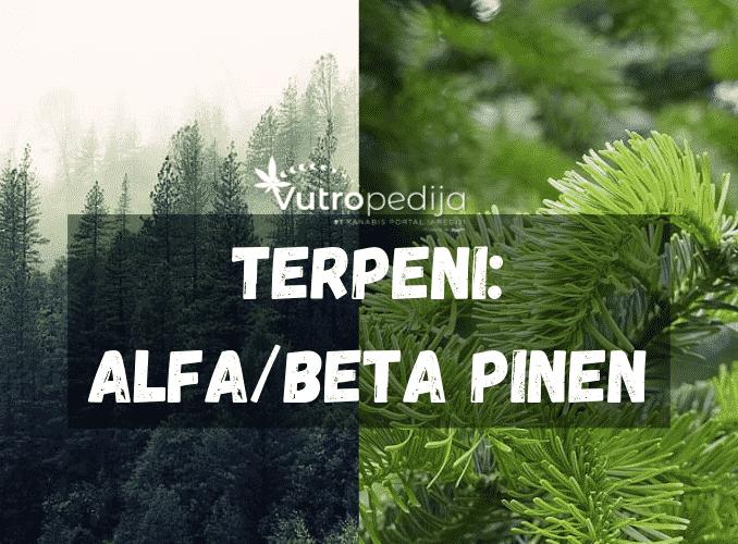 Alfa/beta pinen