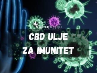 CBD ulje za imunitet