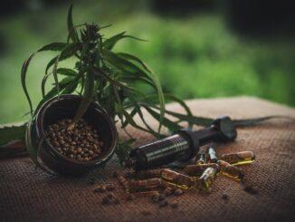 CBD smola, kapsule i biljka kanabisa na stolu.
